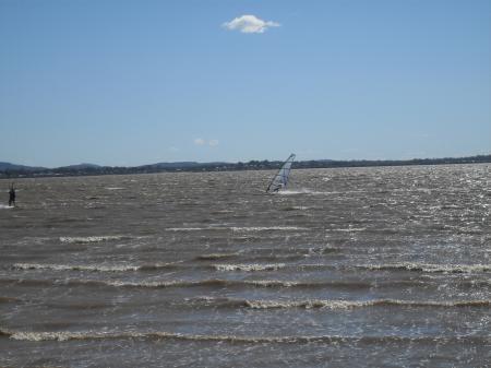 Very windy with windsurfer