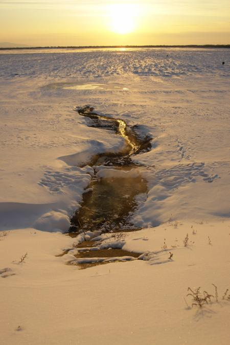 Water stream in the snow