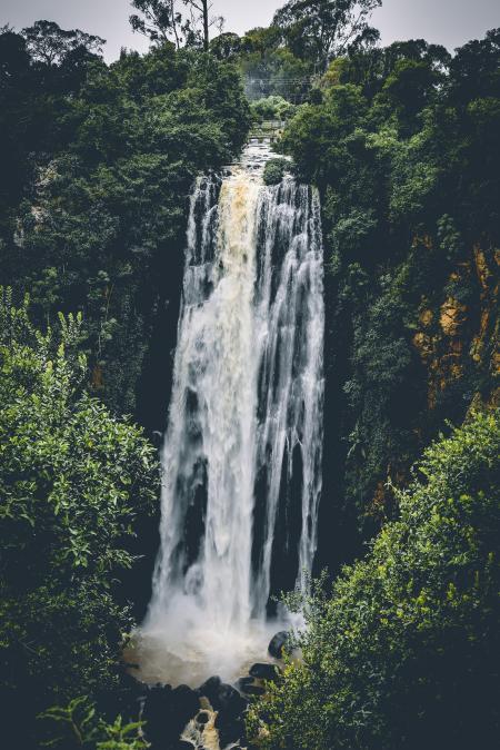 Waterfall Between Trees