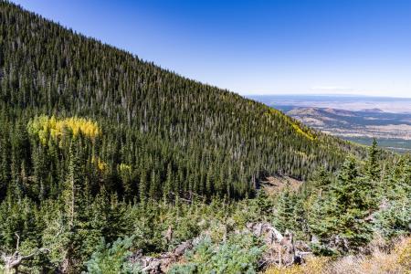 Waterline Trail: Abineau-Bear Jaw Loop