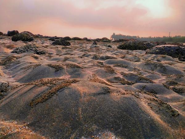 Crab Holes on Sea Beach of Saint Martin's Island at Sunrise