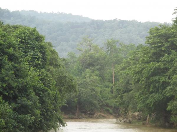 Green Hill Pic from Bastar