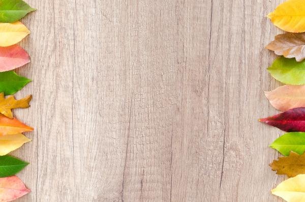 Leaves of Brown Wooden Table