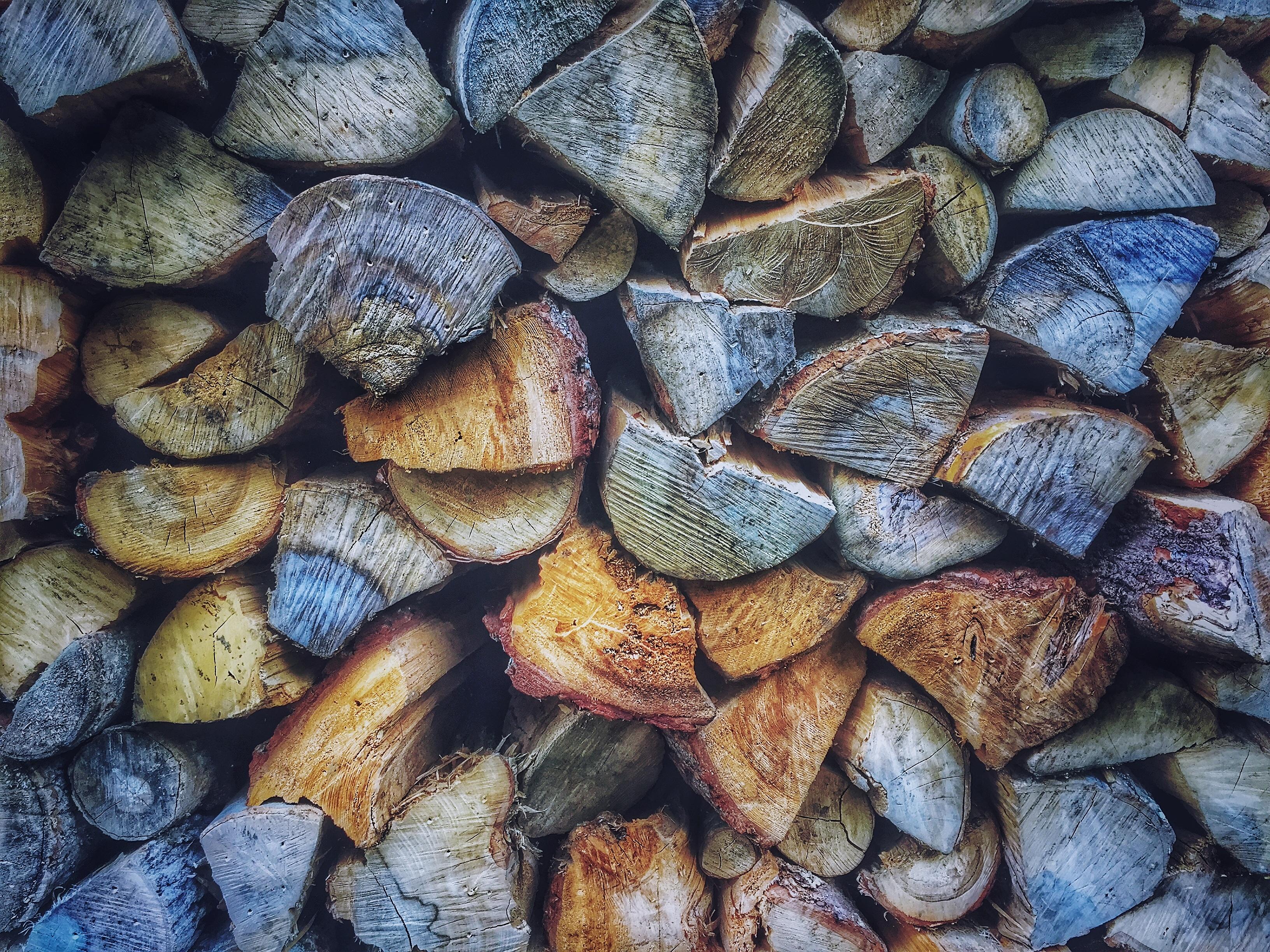Wood Logs Creative Commons - CC0 | HQ Photo Wood Logs